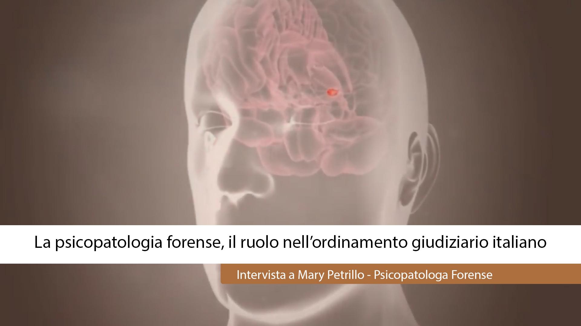 PSICOPATOLOGIA FORENSE, IL RUOLO NELL'ORDINAMENTO GIUDIZIARIO ITALIANO